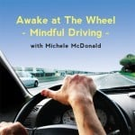 AWAKE AT THE WHEEL: Mindful Driving by Michele McDonald