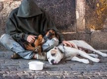 HOMELESSNESS: An activist's personal story about why everyone matters