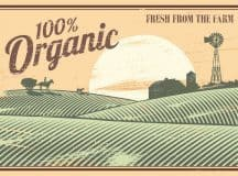 NATURAL BALANCE: John Robbins at the Food Revolution Summit