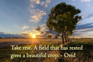 Taking rest - a quote by Ovid
