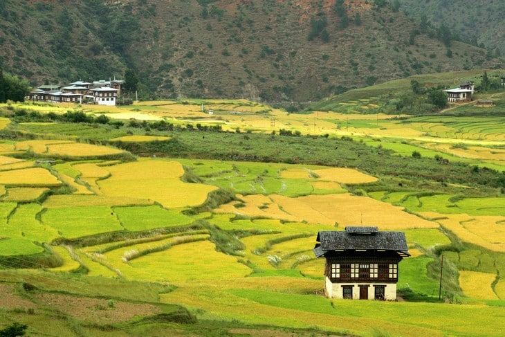 FULLY ORGANIC: Bhutan aims for 100 per cent organic farming in 10 years