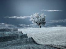 LIKE I WANT IT TO BE: An interview with photographer Caras Ionut