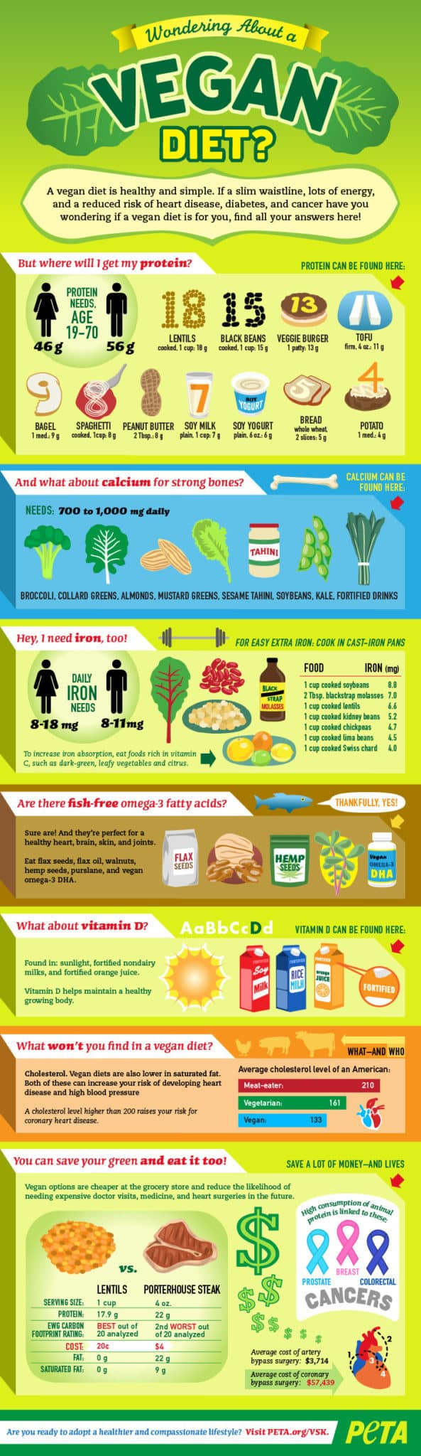 Infographic - Wondering about a vegan diet?