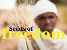 SEEDS OF FREEDOM: Securing our food sovereignty [video]