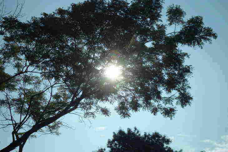 THE SPIRITUAL IMPERATIVE: Enlivening the process of transformation