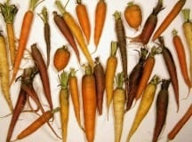 CARROT/DAIKON DRINK: A recipe from whole foods cook Christina Pirello's Wellness 1,000
