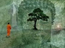 LOJONG: Buddhist mind training that clears ignorance and reveals everything as it is