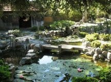 LESSONS FROM A ZEN GARDEN: What's holding you back?