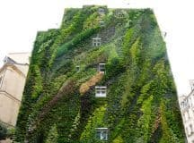 VERTICAL VEGETATION: Green walls create a breathing garden of life in the city