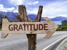 THE GRATITUDE CHALLENGE: What are you thankful for today?
