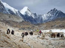 THE TAO OF SHANGRI-LA: Learning social enterprise from nomads and monks