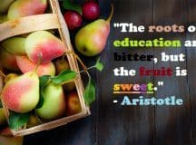 QUOTES ABOUT EDUCATION: Some of the top quotations on education, school and learning
