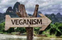 veganism sign on tree - i'm vegan, but i'm not having a worse time than you