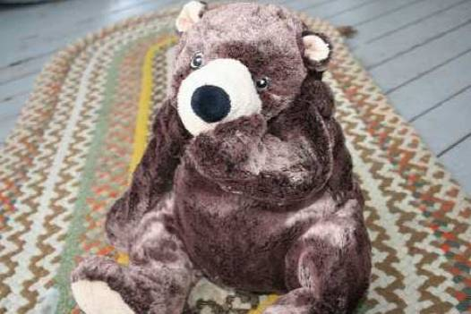 Bear looking at monster - The Mindful Monster fiction