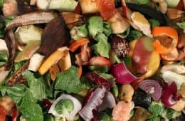 food scraps - the problem with throwing out food