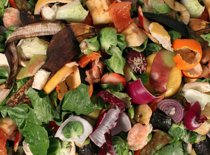 how to stop food waste in north america