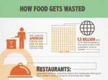 FOOD WASTE: 4 factors contributing to the crisis and what can be done about it