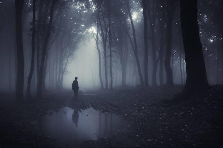 Man in shadowy wet wood - Poems by Ryan Warren