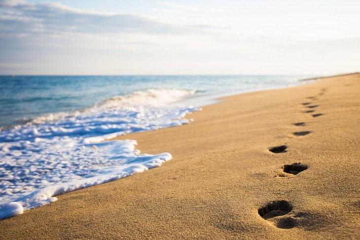 Image Result For Ocean Beach Scene