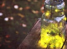 POEMS BY MARY ALLISON CATES: What the Lightning Bugs Know, That Day We Painted Everything Gold, To the Woman Behind Nancy Drew
