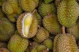 Controversial fruit - Durian