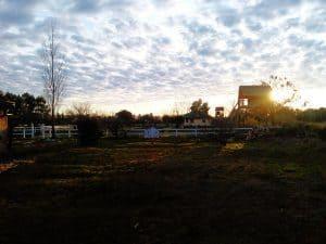 Farm scene at Hare Krishna community Argentina