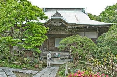 Nichiren Buddhist temple - Nobody knows you fiction
