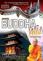 Buddha Wild documentary