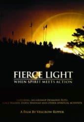 Fierce Light movie