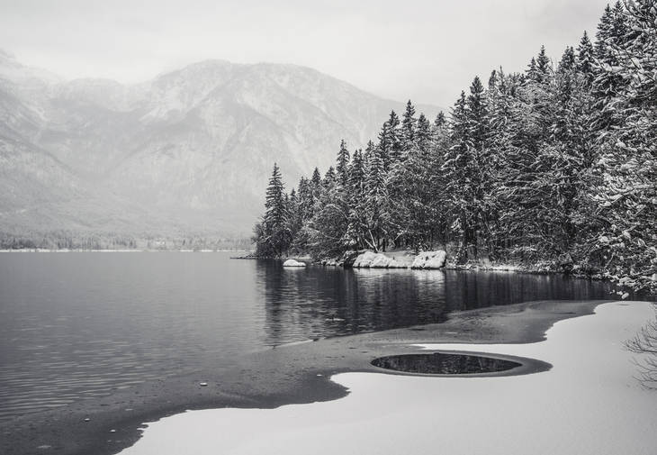 Lake and trees in greyscale - Poems by Matti Salminen