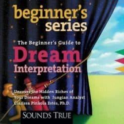 Beginner's Guide to Dream Interpretation audio