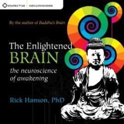 Rick Hanson The Enlightened Brain audio