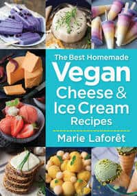 Front cover of book - Delish without dairy