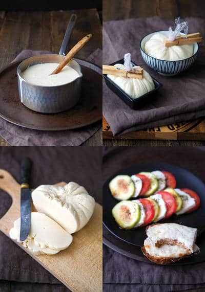 Dairy-free mozzarella cheese - Delish without dairy