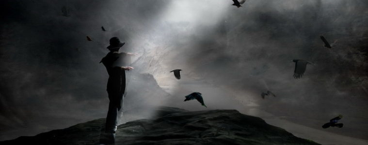 Silhouette of young man in a field of crows at dusk