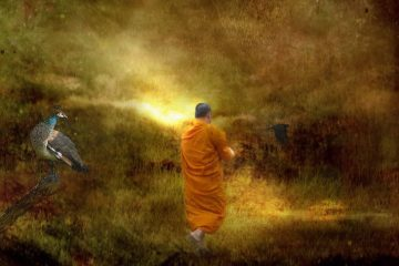 Monk in walking meditation