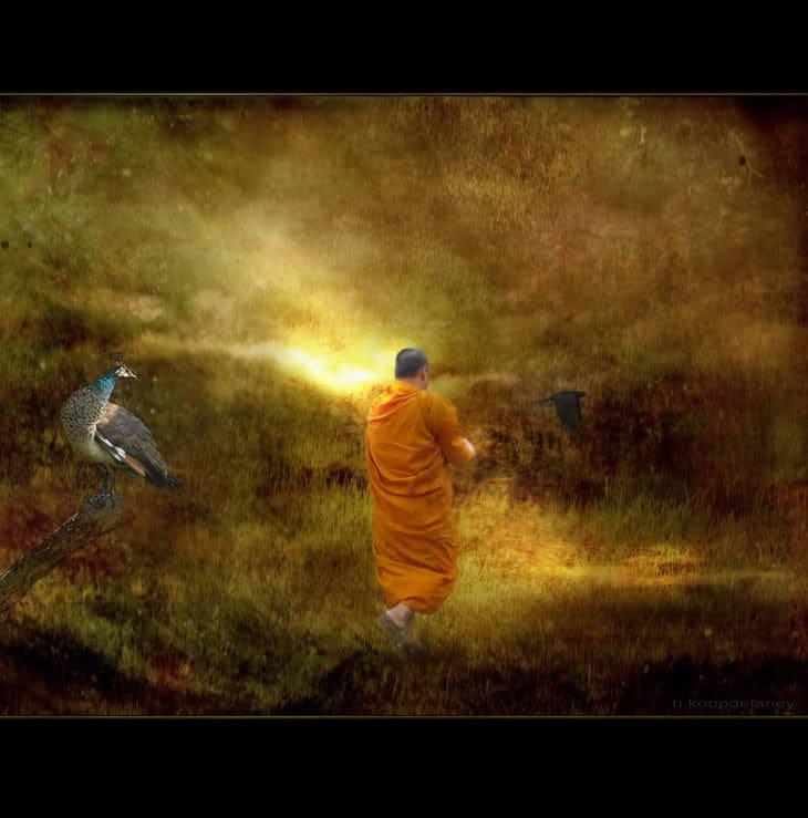 Monk in walking meditation