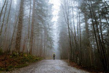 Walking alone-healing
