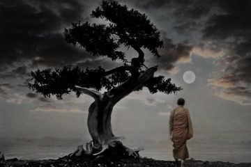 monk walking meditation under tree