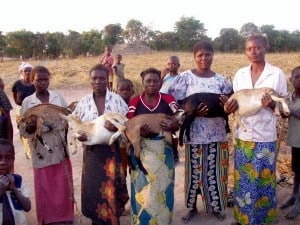 People Who Care: Dr. Cary Rasof - African grannies holding goats