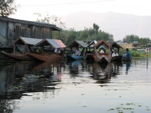 Flotilla of shikaras on Dal Lake