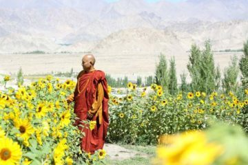 Sanghasena - Engaged Buddhism in India