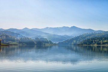 lake purification of intent