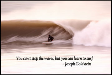 Surfing and quote about accepting others and life circumstances