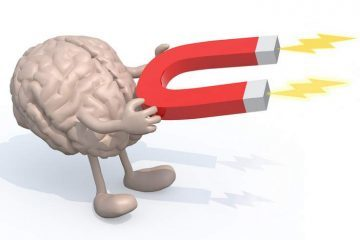artwork of brain holding a magnet