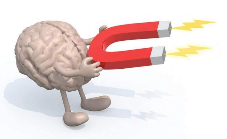 human brain vs computer essay