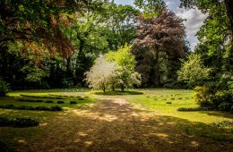 garden - live sustainably