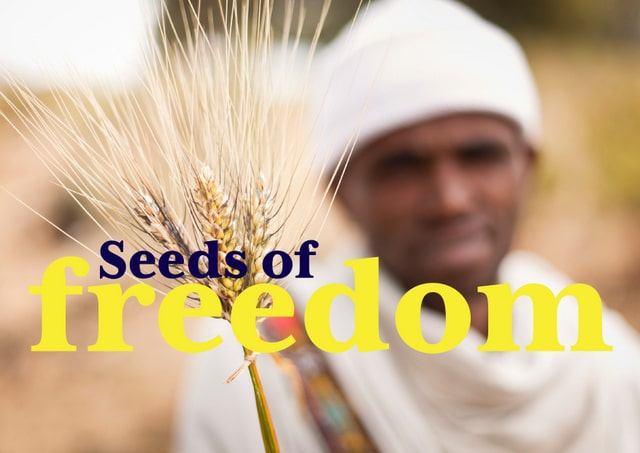 SEEDS OF FREEDOM: Securing our food sovereignty [Documentary]