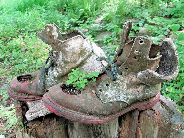 Eco friendly gardening 8 ways to creatively reuse old for Things used for gardening