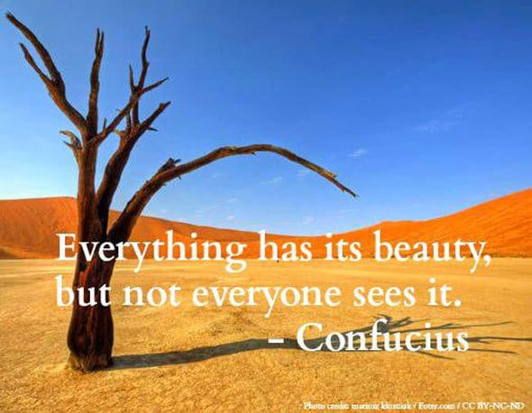 Tree in desert - Confucius' words of wisdom